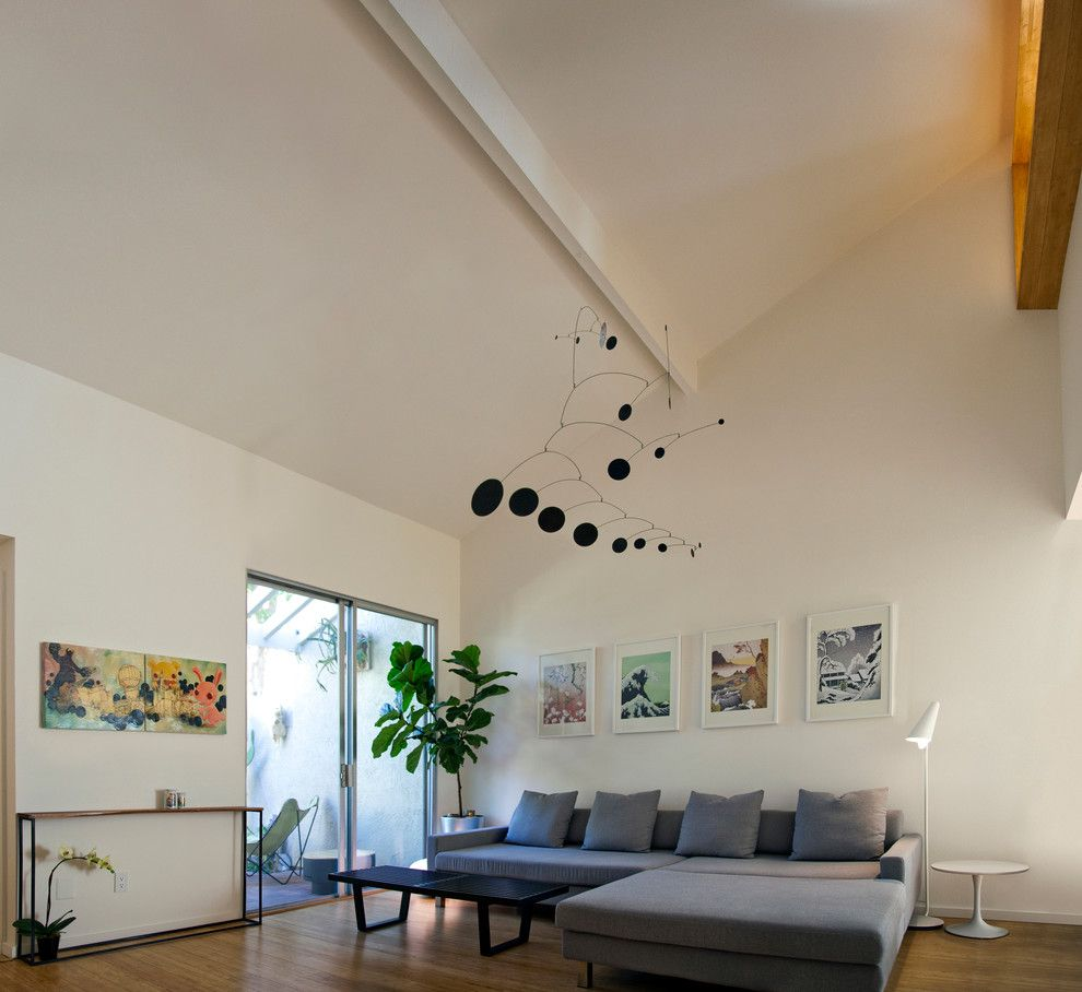 Alexander Lumber for a Contemporary Living Room with a Townhome and Townhouse Renovation in San Diego by Jon+Aud Design