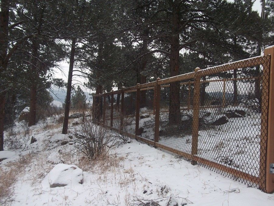 Alpine Fence for a Traditional Spaces with a See Through and Kittridge Mountain Top Dog Run by Alpine Fence of Colorado, Llc
