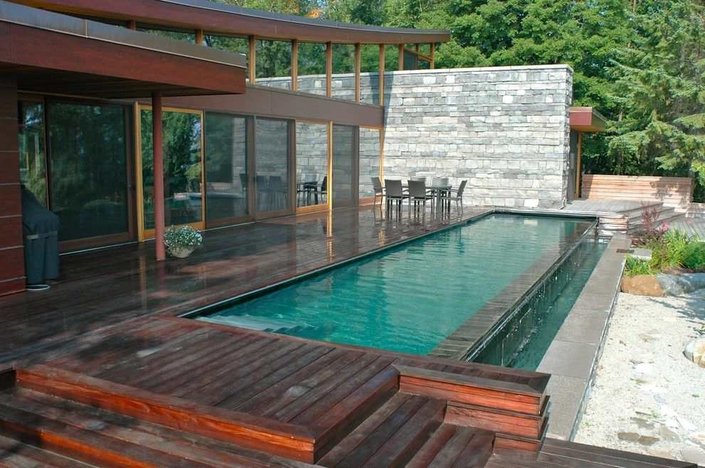 Altius for a Contemporary Pool with a Contemporary and Christie Beach Pool by Altius Architecture, Inc.
