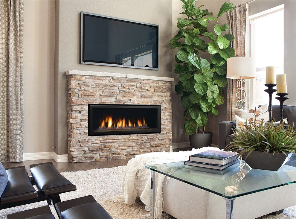 Aqua Quip for a  Living Room with a Fireplaces Accessories and Fireplaces by Aqua Quip