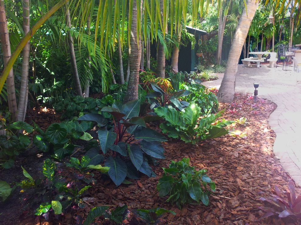 Backyard Makeover for a Tropical Landscape with a Tropical and Tropical Paradise   Backyard Makeover by Gardening Angel