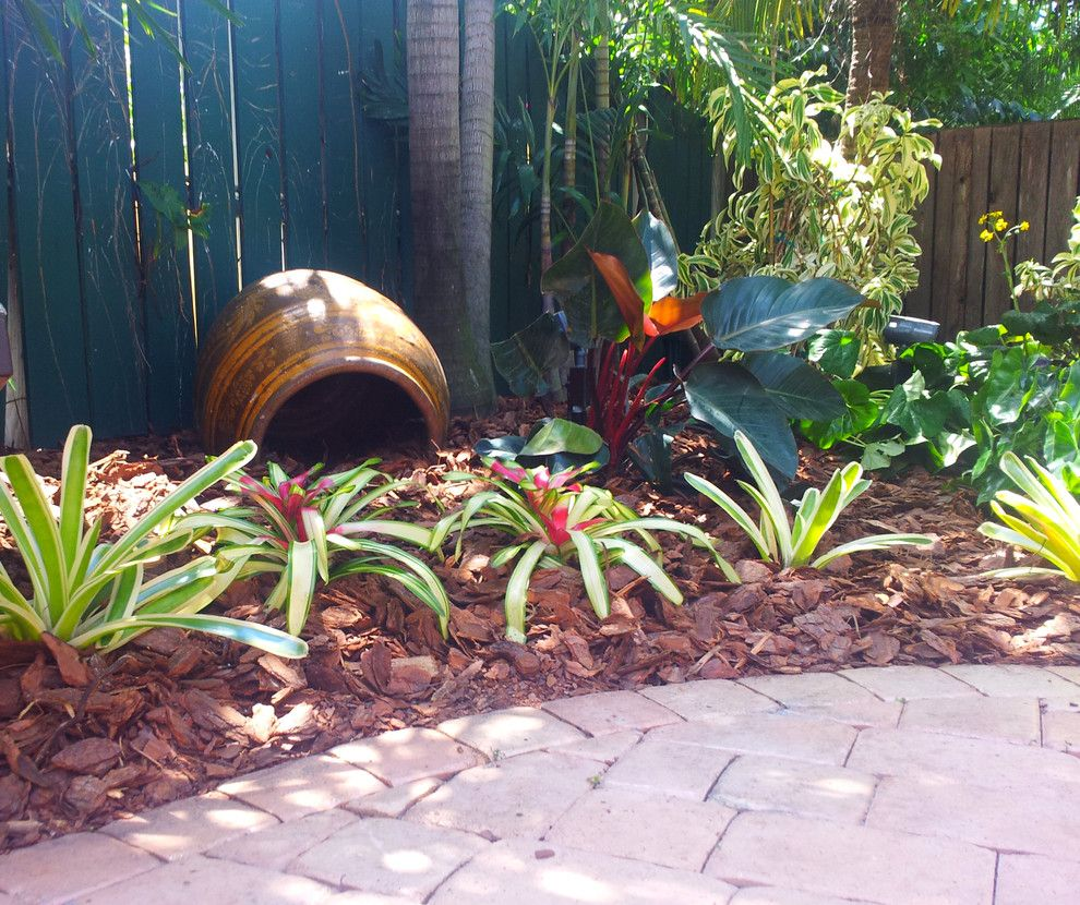backyard makeover for a tropical landscape with a tropical and