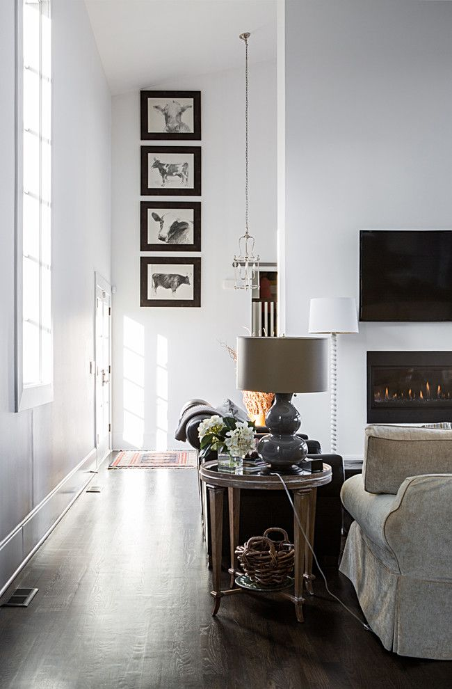 Barbara Cosgrove for a Contemporary Living Room with a Pendant and Framed Artwork, Pendant Lantern, Barley Twist Floor Lamp, Double Gourd in Grey by Barbara Cosgrove Lamps