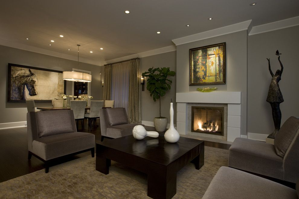 Benjamin Moore Revere Pewter Color Match for a Transitional Living Room with a Area Rug and Honore Transitional Living Room & Dining Room by Michael Abrams Limited