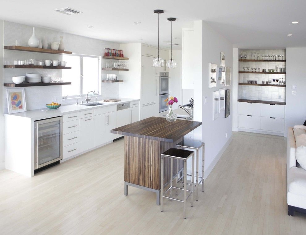Berger Appliance for a Modern Kitchen with a Cabinet Front Refrigerator and Modern Kitchen by Cliff Spencer Furniture Maker