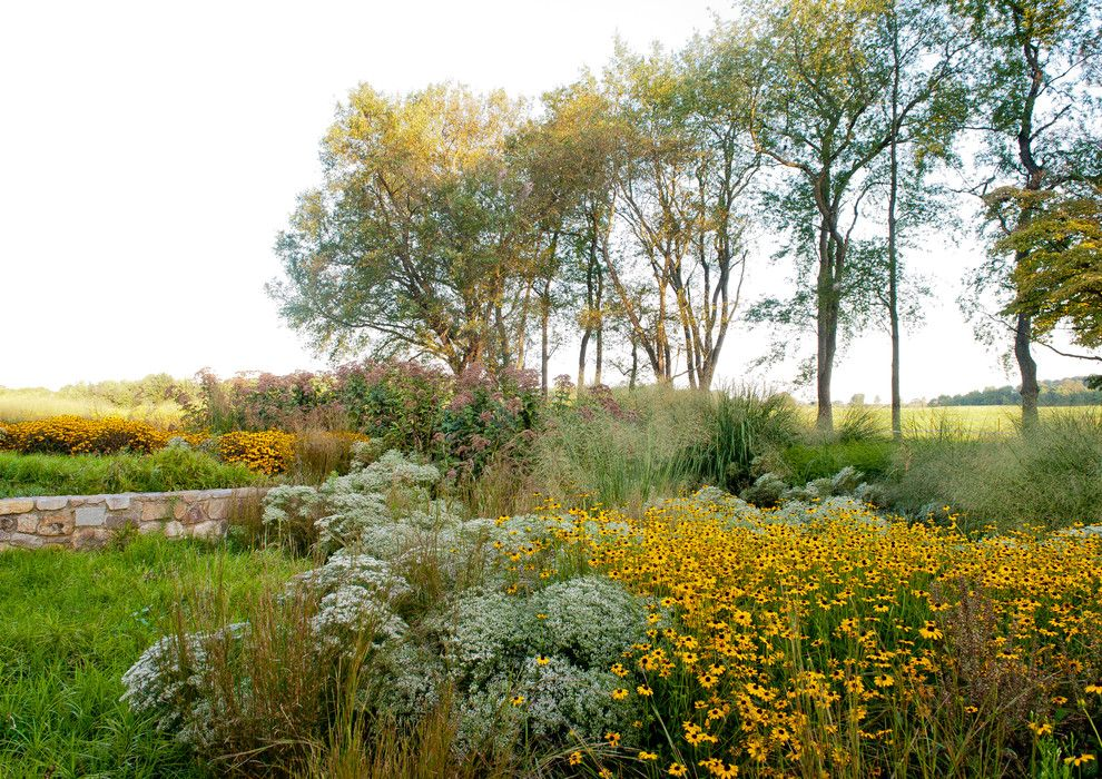 Best Buy Grapevine for a Rustic Landscape with a Species Rich Landscape and Sustainable House by Jonathan Alderson Landscape Architects, Inc.