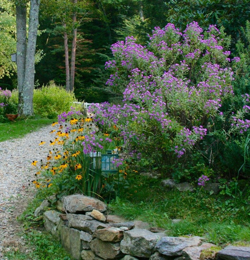 Brook Farm General Store for a  Landscape with a New England Aster and New England and New York Aster by Ellen Sousa/turkey Hill Brook Farm