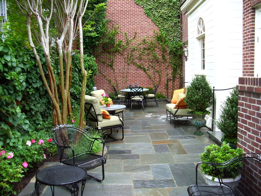 Cambridge Paving Stones for a Traditional Patio with a Climbing Plants and Traditional Small Scale Patio by Notting Hill Gardens | Design Build Construction