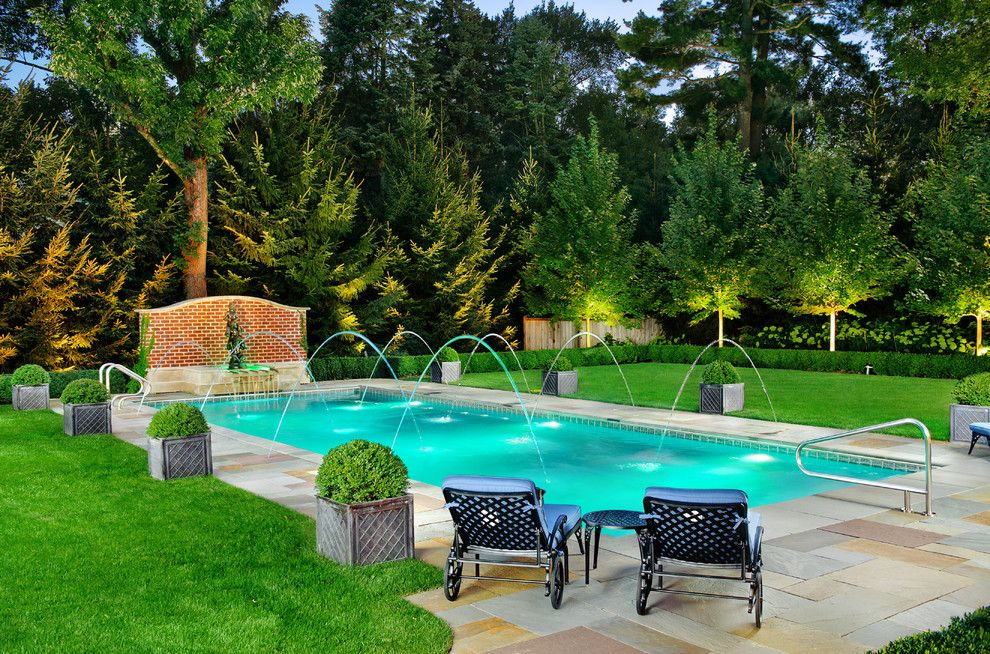 Cannon Pools for a  Pool with a Construction of Swimming Pool and Swimming Pool Water Features by Platinum Poolcare