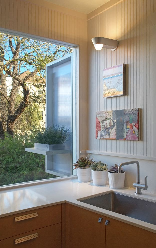 Cesarstone for a Contemporary Kitchen with a Plant Pots and Contemporary Kitchen by Houzz.com