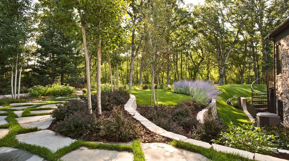 Chinese Pistachio Tree for a Contemporary Landscape with a Pavers and Windsor Companies by Windsor Companies