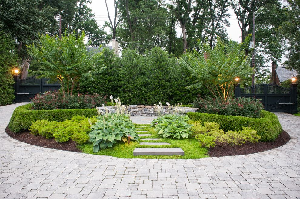 Chinese Pistachio Tree for a Traditional Landscape with a Washington and Traditionalism with a Twist by D & a Dunlevy Landscapers, Inc.