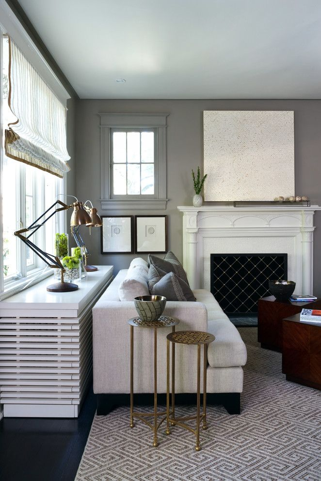 Chiver for a Transitional Living Room with a Gray Walls and Living Room by Sightline Art Consulting