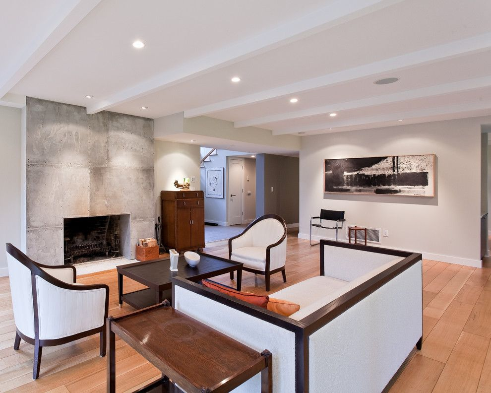 Concrete vs Asphalt for a Contemporary Living Room with a Modern Fireplace and Knopp Scott Residence by Synthesis Design Inc.