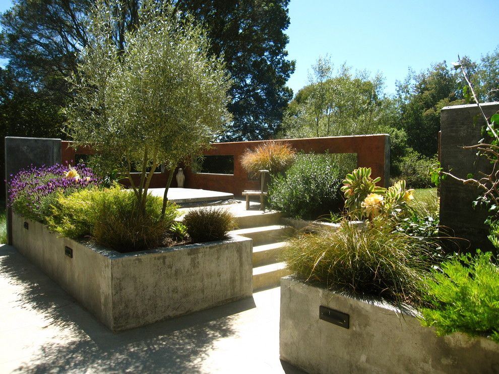 Concrete Vs Asphalt For A Rustic Patio With A Grasses And Contemporary Patio  By Kathleenshaefferdesign.