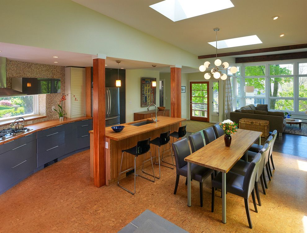 Crestview Doors for a Contemporary Kitchen with a Bamboo Counters and Bethesda Mid Century Addition/renovation by Balodemas Architects