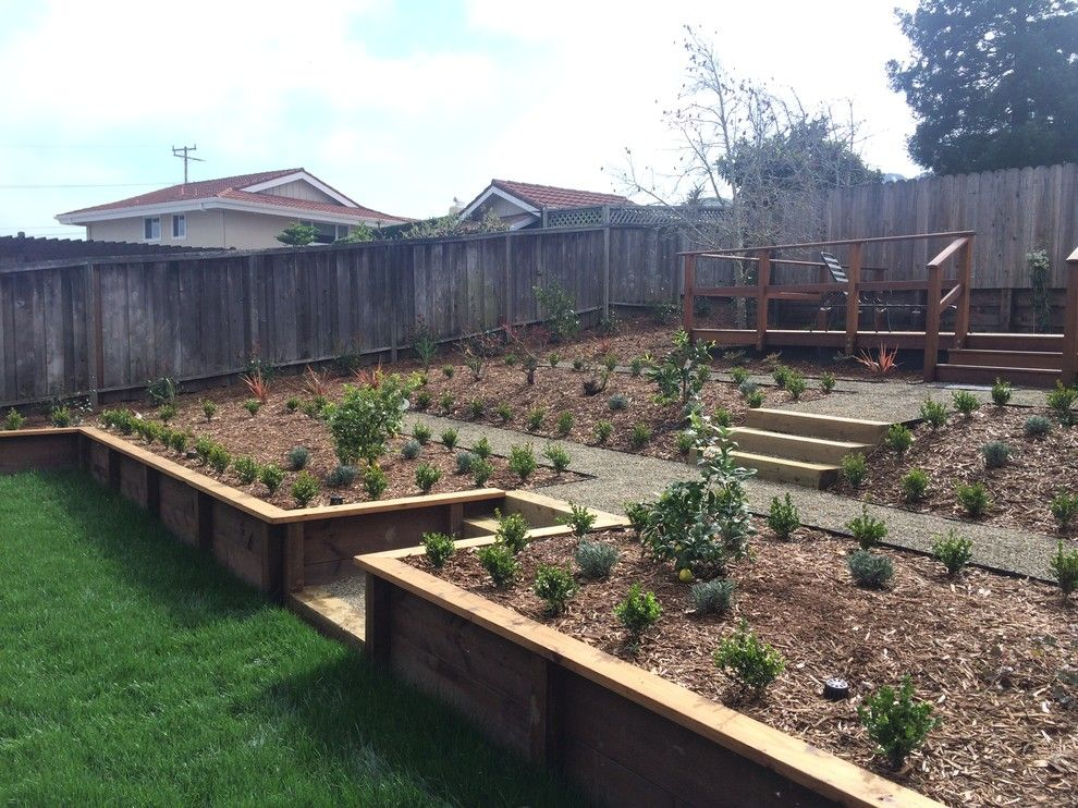 Delta Bluegrass for a Contemporary Landscape with a Delta Bluegrass and Corte Madera Classic by the Land Collaborative