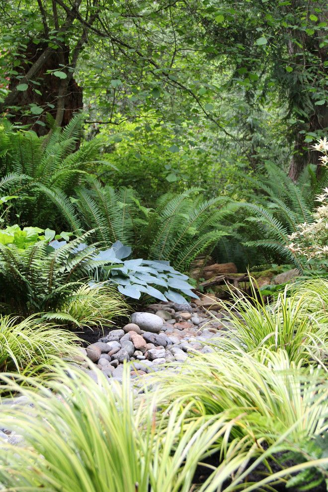 Directv Rio for a Contemporary Landscape with a Native and Lytle Road, Bainbridge Island   Shaded Creek by Bliss Garden Design