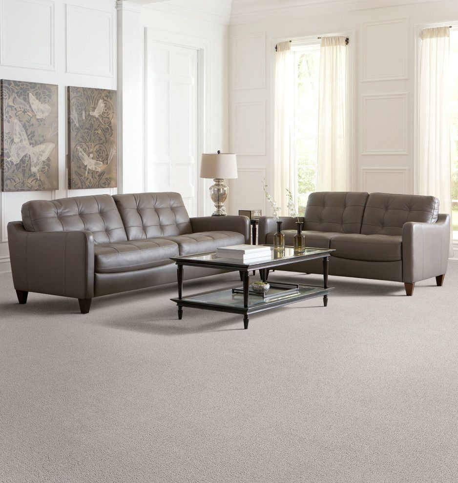 Dixie Carpet for a Traditional Living Room with a Carpets Carpet Tiles and Living Room by the Dixie Group: Carpet & Rugs