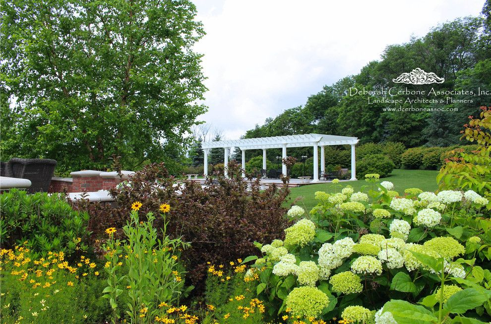 Fairway Lawns for a Traditional Spaces with a Hydrangea and Fairway Manor Home by Deborah Cerbone Associates, Inc.