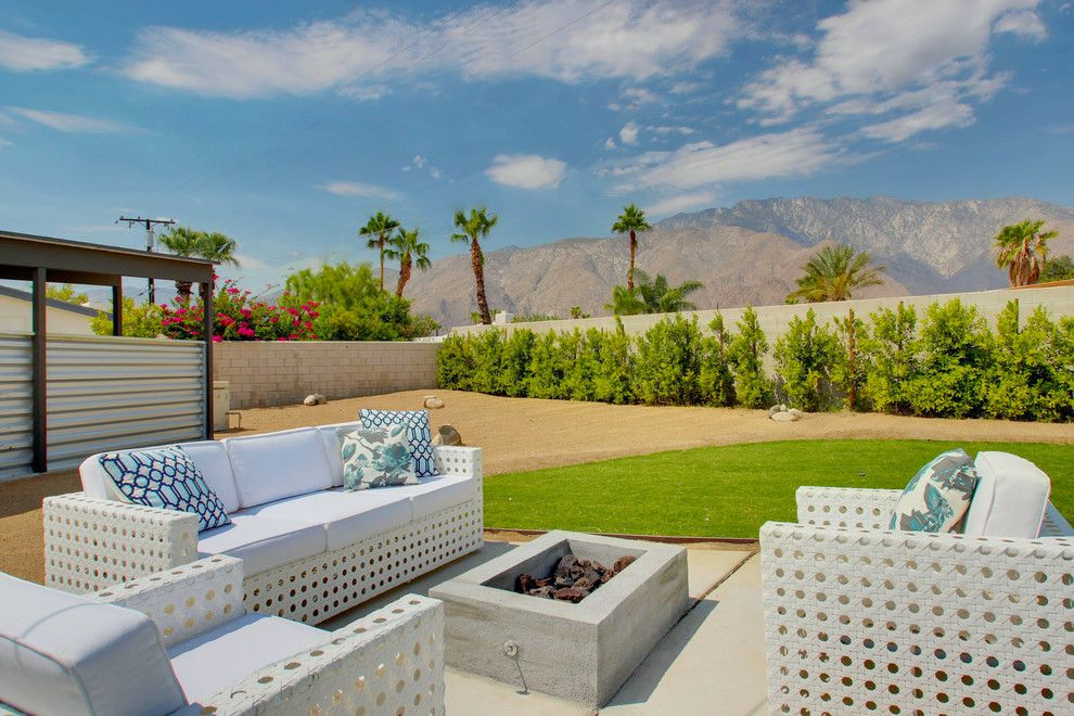 Ficus Nitida for a Midcentury Landscape with a Outdoor Sofas and Kitty Hawk by Ndc Homes, Inc.