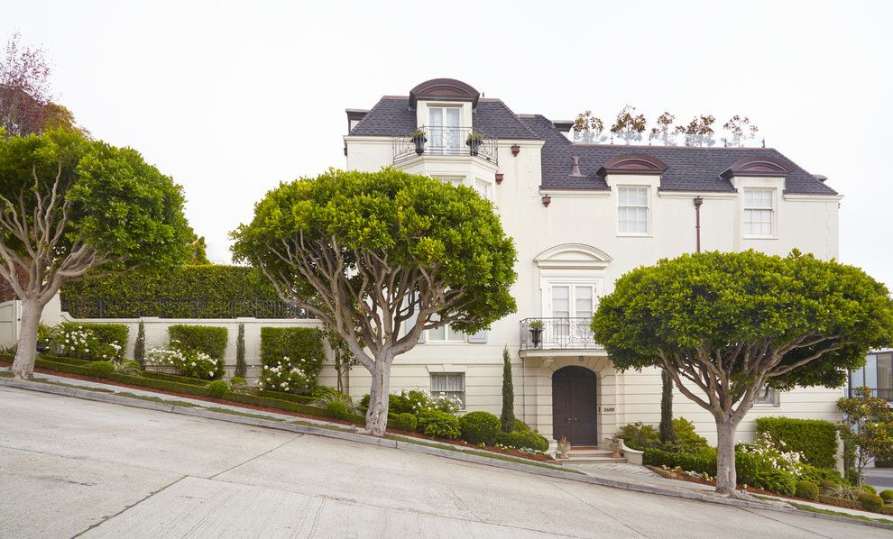 Ficus Nitida for a Traditional Exterior with a Hilltop House and Provincial Palace by Reynlds Sebastiani Design Services