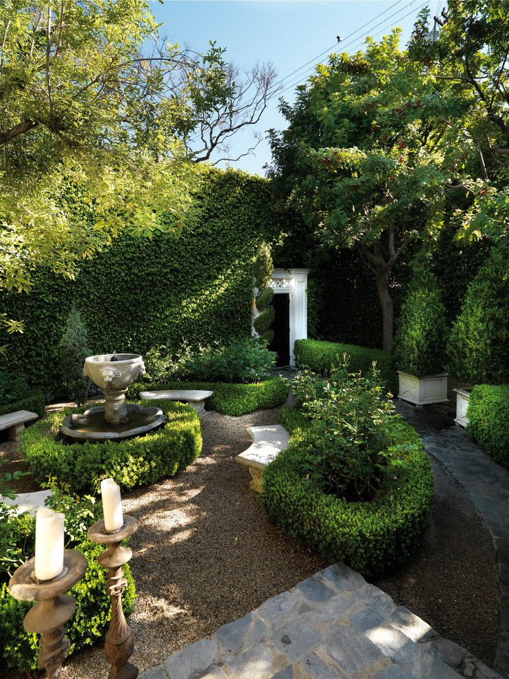 Ficus Nitida for a Traditional Landscape with a Hedges and Luxe West Hollywood Residence by Philip Nimmo Design