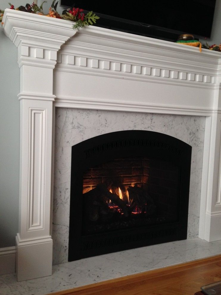 Fireplace Xtrordinair for a Traditional Living Room with a Fireplace X 864 and Direct Vent Gas Fireplaces   Traditional by Nyc Fireplaces and Outdoor Kitchens