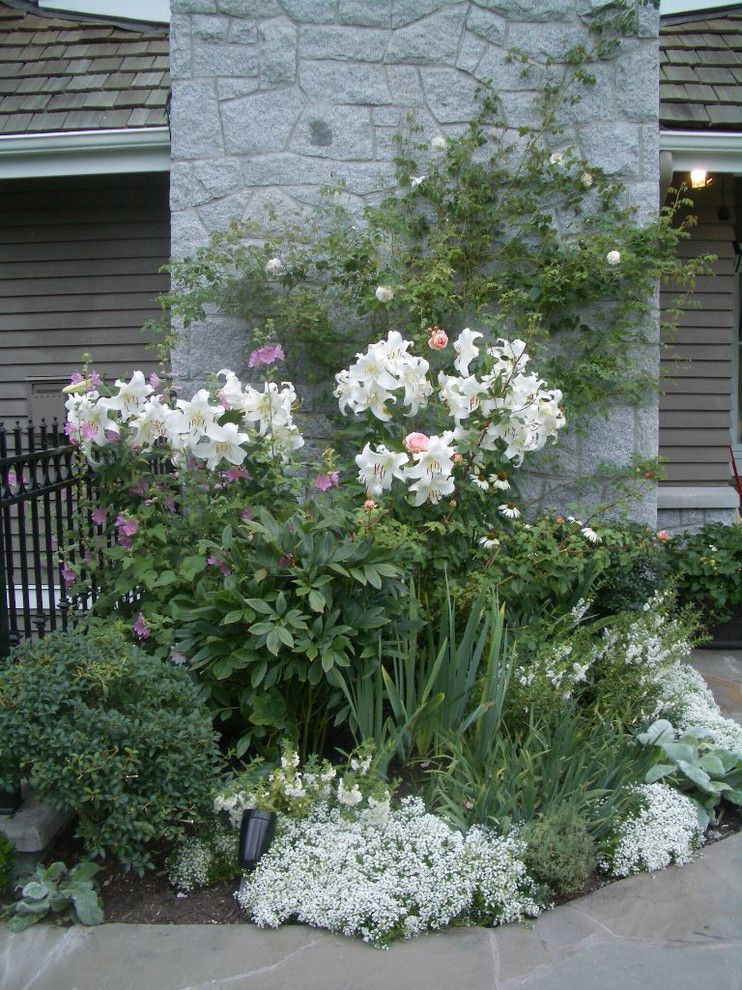 Fruit Basket Flowerland for a Traditional Landscape with a Vancouver and White Garden by Glenna Partridge Garden Design
