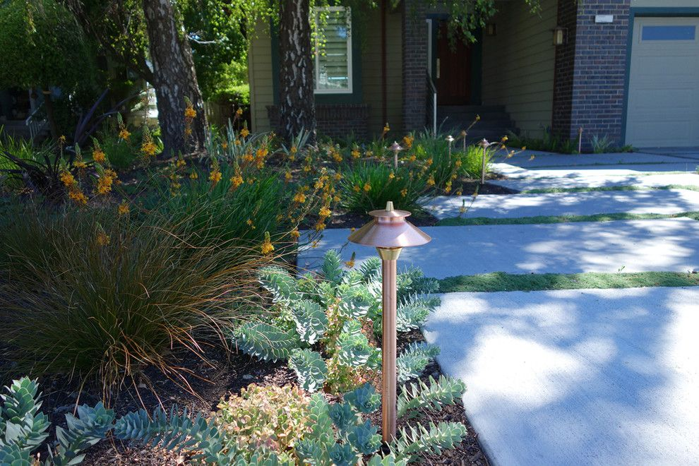 Fx Luminaire for a Modern Landscape with a Novato Landscape and Modern Water Side Landscape Remodel   Front, Bel Marin Keys, Novato, Ca by Dig Your Garden Landscape Design