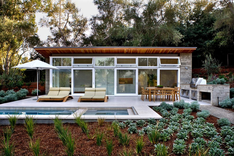 Griffin Pools for a Contemporary Pool with a Bark Mulch and Atherton Residence by Turnbull Griffin Haesloop