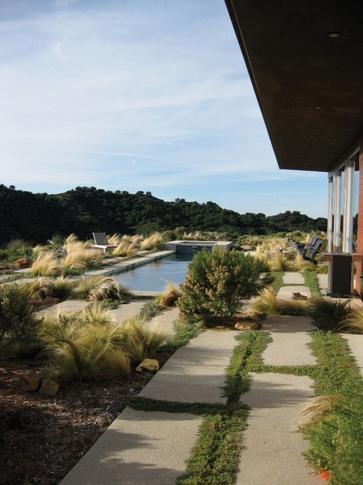 Griffin Pools for a Modern Landscape with a Feather Grass and Topanga Canyon Residence by Gel: Griffin Enright Landscape