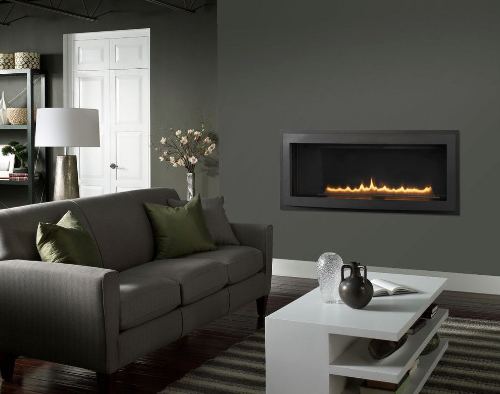 Heatilator for a Contemporary Living Room with a Gas Fireplaces and Heatilator Rave Series   42