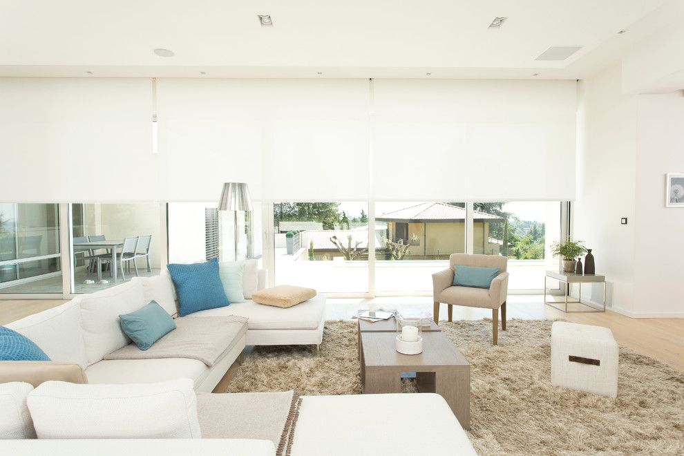 Hemispheres Furniture for a Modern Living Room with a Beige Rug and Somfy by Somfy