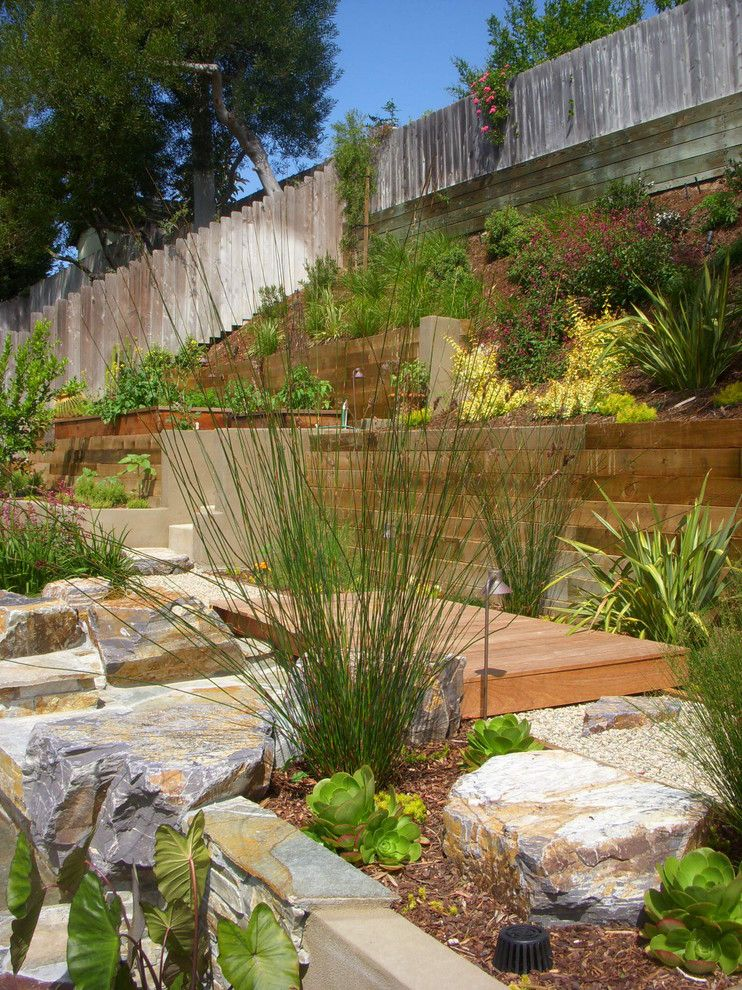 Hillside Landscaping for a Contemporary Landscape with a Raised Beds and Encinitas Out Door Kitchen by Verdescape Inc