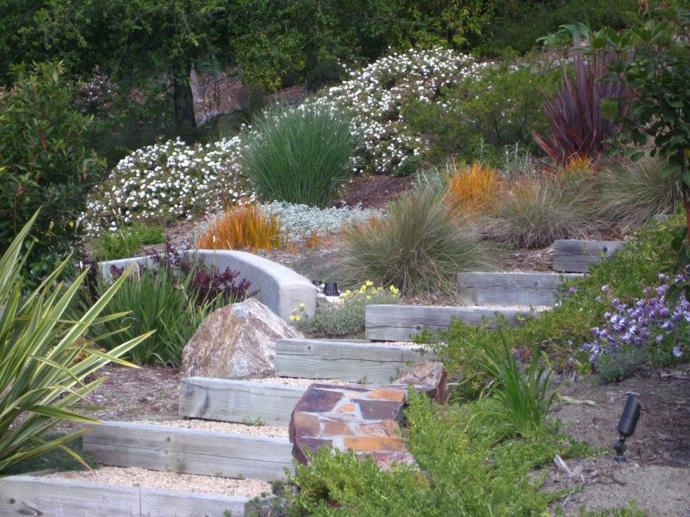 Hillside Landscaping for a Mediterranean Landscape with a Steps on a Hillside and Canyon Retreat by Dancing Leaf Designs