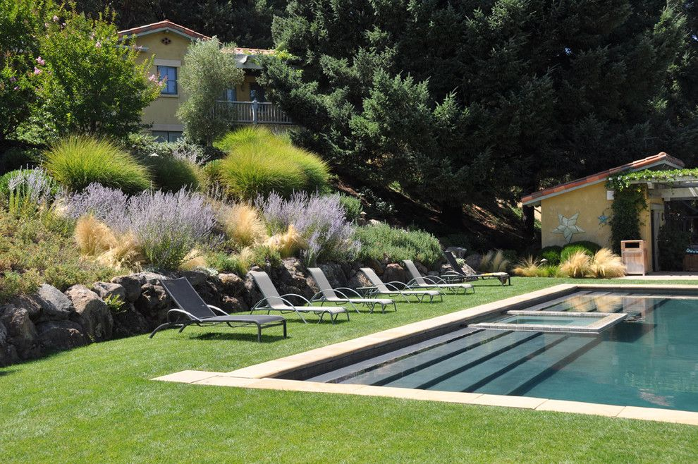 Hillside landscaping for a mediterranean pool with a for Modern pool landscaping