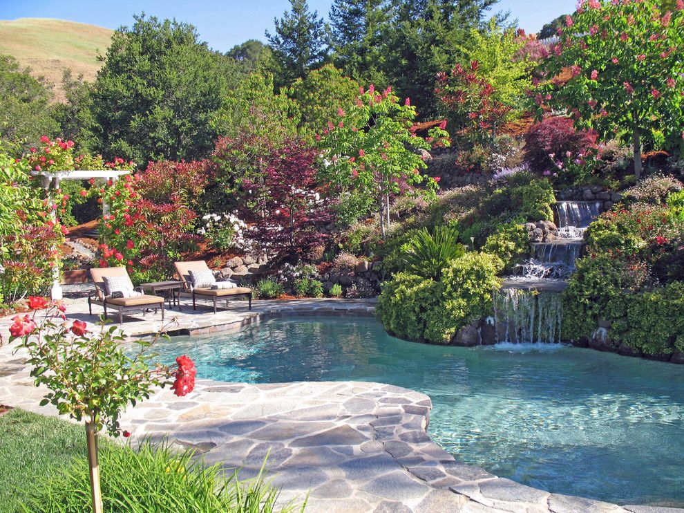 Hillside Landscaping for a Traditional Landscape with a Backyard and Hillside Landscape · Natural · Hillside Swimming Pool and Spa · Waterfall by Alder Group, Pool and Landscape Co.