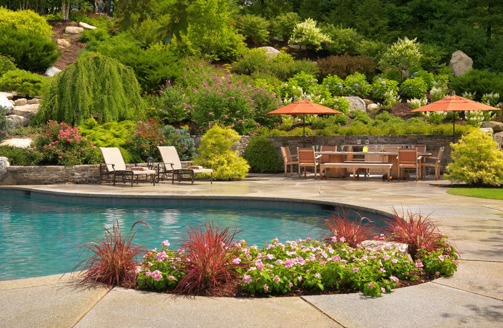 Hillside landscaping for a mediterranean pool with a for Pool design hillside
