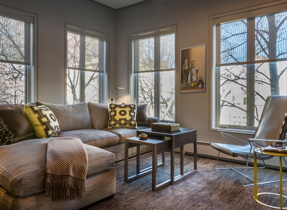 Holland and Sherry for a Contemporary Family Room with a Sunroom and East Lakeview Residence by Kaufman Segal Design