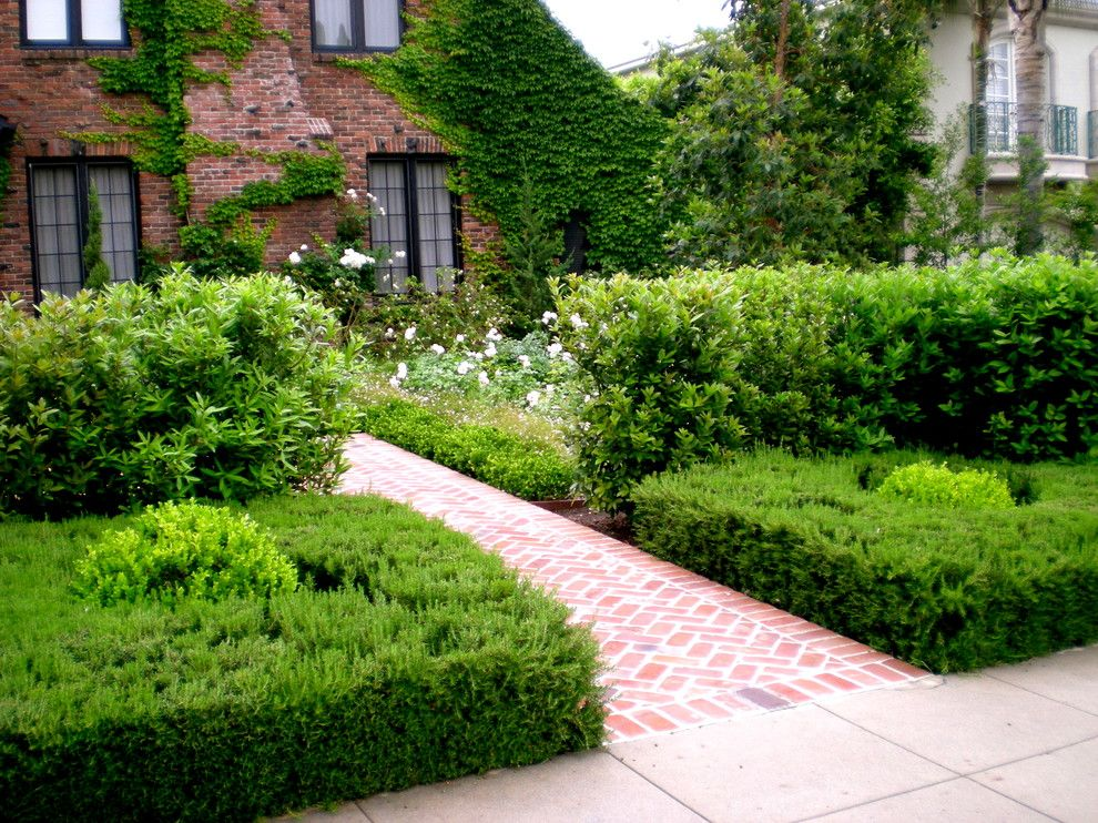 Hollyhock House for a Traditional Landscape with a Boxwood Spheres and English Manor House by Mayita Dinos Garden Design