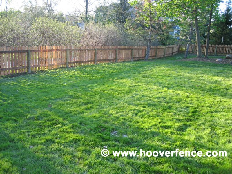 Hoover Fence for a Contemporary Spaces with a Dog Ear Fence and Cedar Picket Fence by Hoover Fence Company