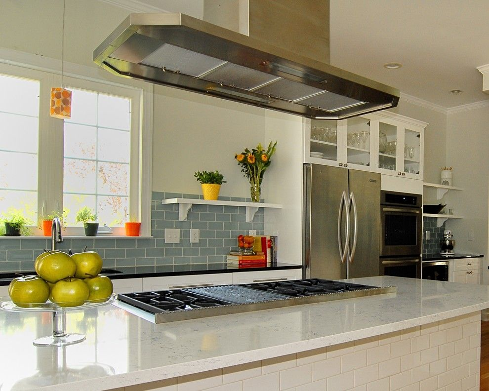 How to Clean Quartz Countertops for a Transitional Kitchen with a White Kitchen and Lady Fern Circle Kitchen by Case Design/remodeling