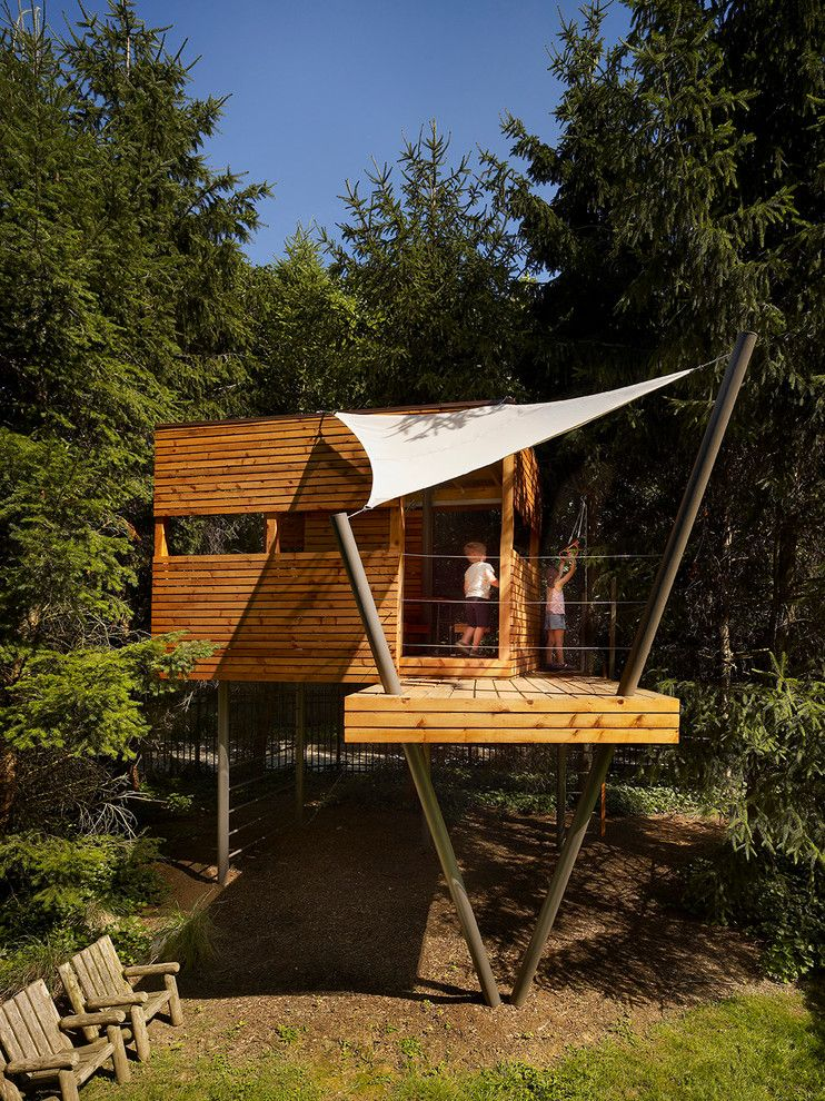 How to Get Rid of Fruit Flies in House for a Contemporary Kids with a Tree House and for Fun: A Tree House by Verner Architects
