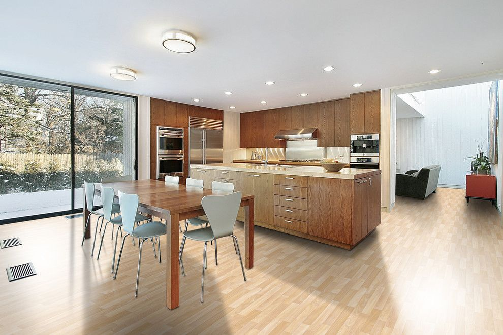 How to Get Rid of Mosquitos for a Contemporary Spaces with a Vinyl and Kitchen by Carpet One Floor & Home