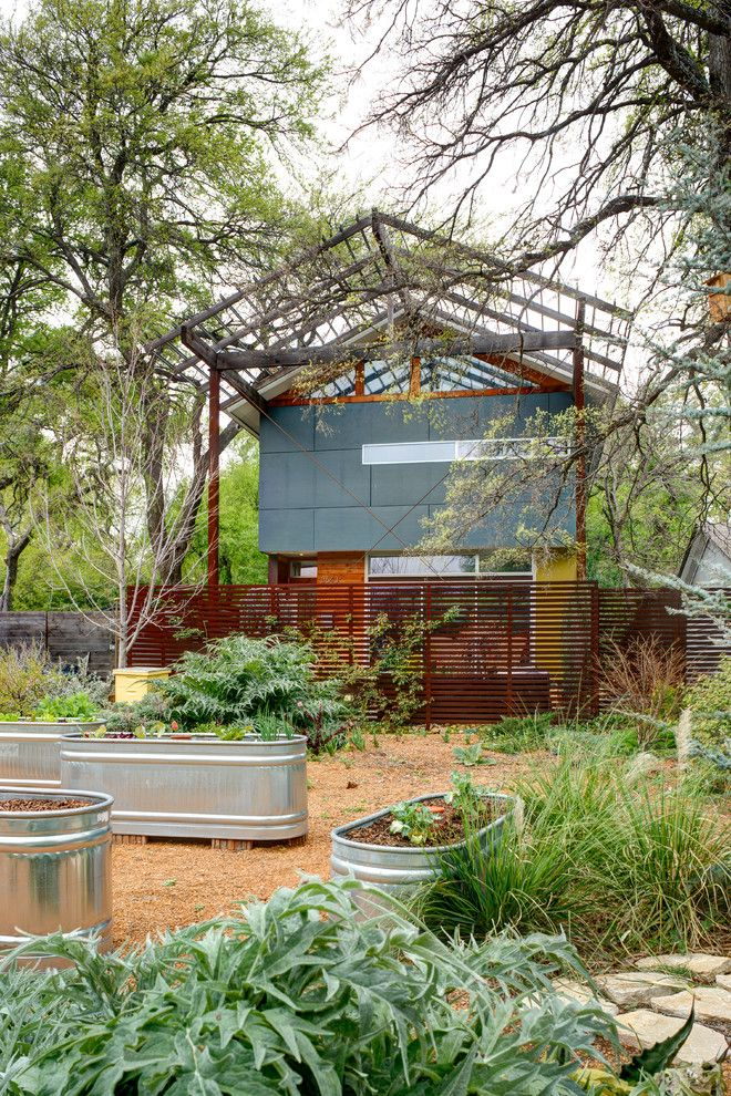 How to Grow Sunflowers for a Contemporary Landscape with a Metal Grate and Groveland House by A.gruppo Architects   Dallas