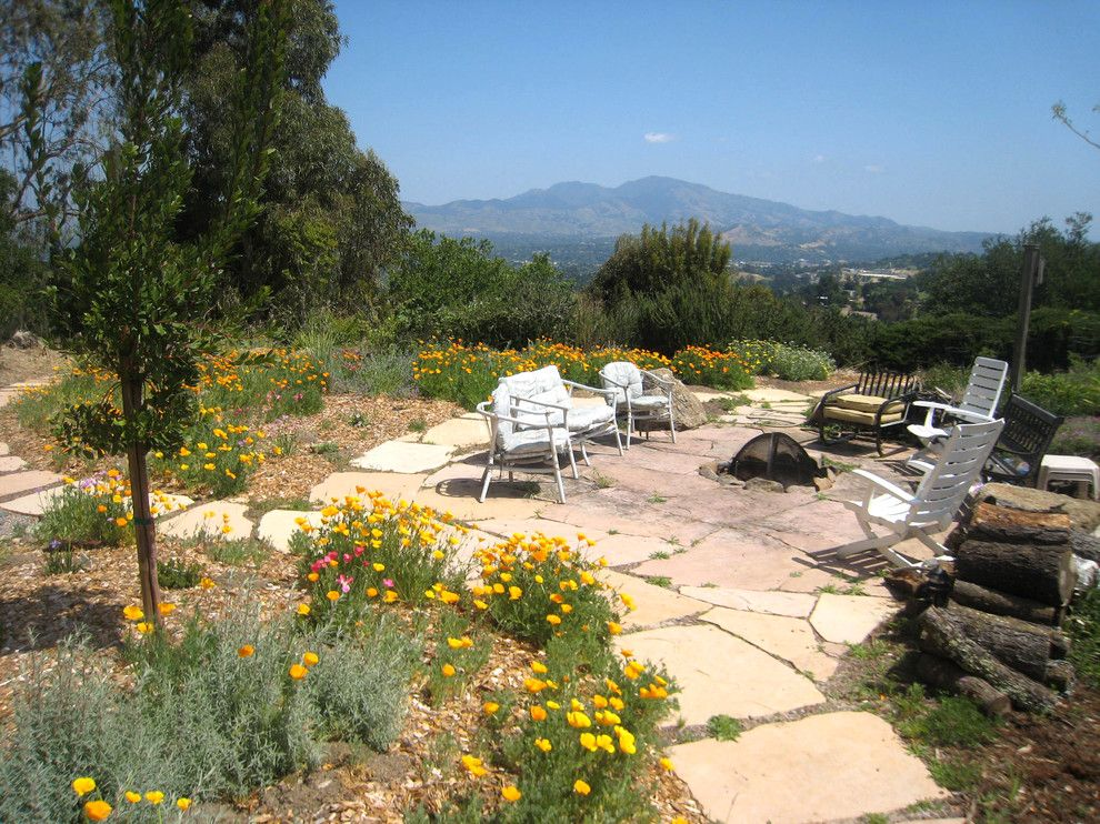 How to Grow Sunflowers for a Eclectic Patio with a Patio Seating and Outdoor Patio with Fire Place by Golden Associates, Landscape Architects