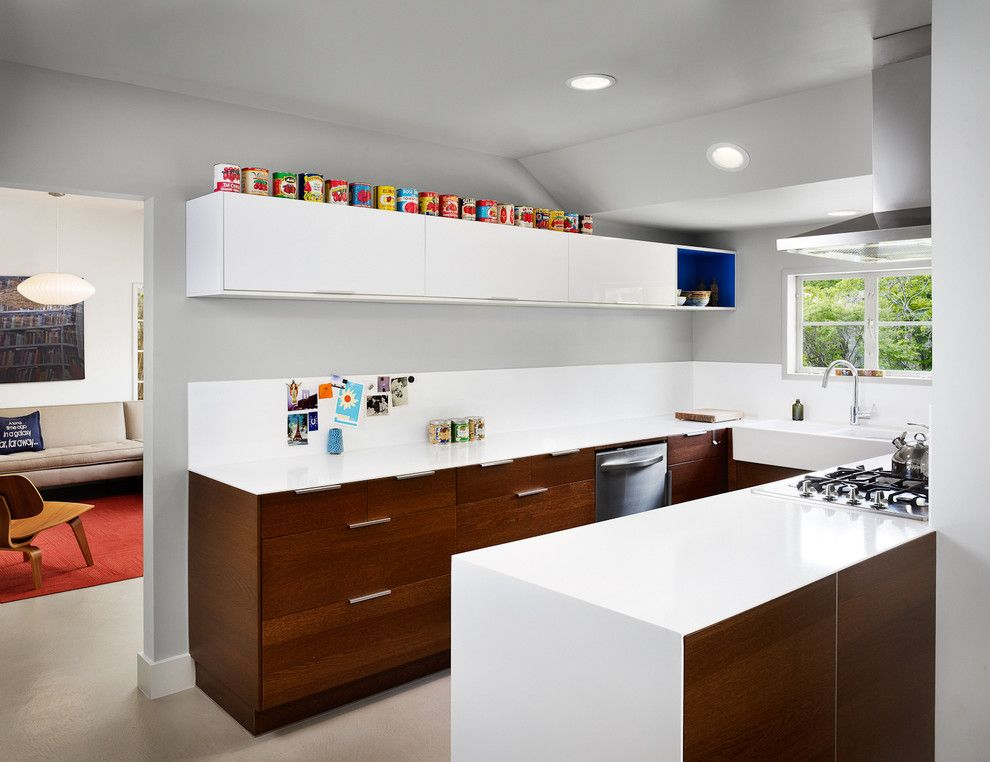 Ikea Besta Cabinet for a Contemporary Kitchen with a Gray Wall and 34th Street House by Clayton&little Architects