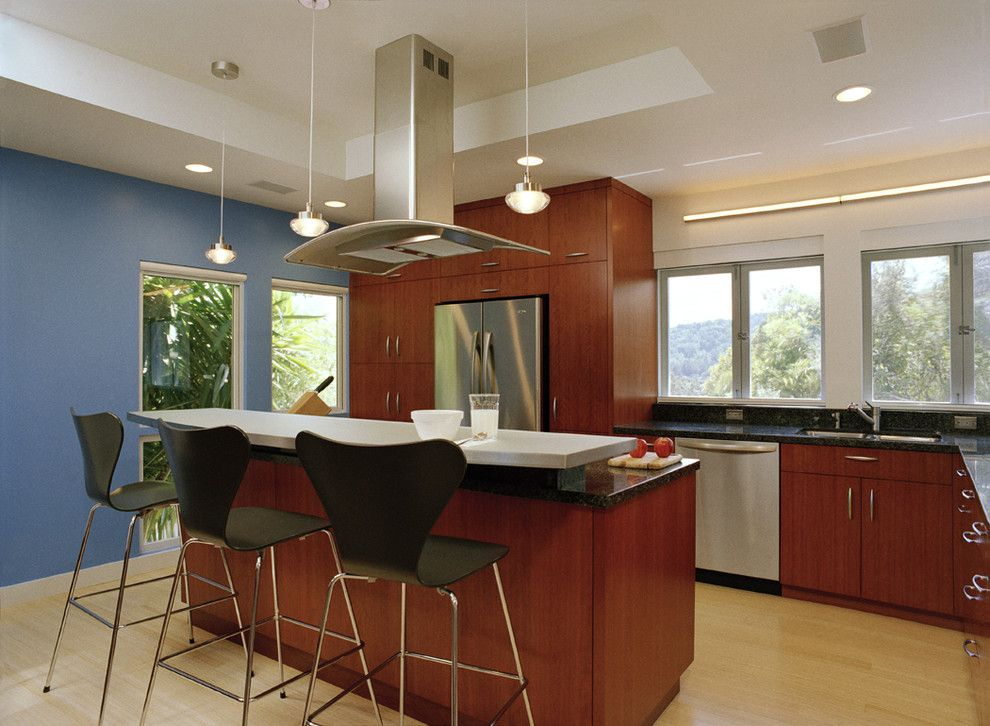 Jesco Lighting for a Contemporary Kitchen with a Hardwood Floors and Larkspur Remodel by Michael Tauber Architecture