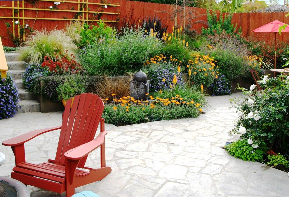 Kangaroo Paw Plant for a Mediterranean Landscape with a Lavender and Debora Carl Landscape Design by Debora Carl Landscape Design